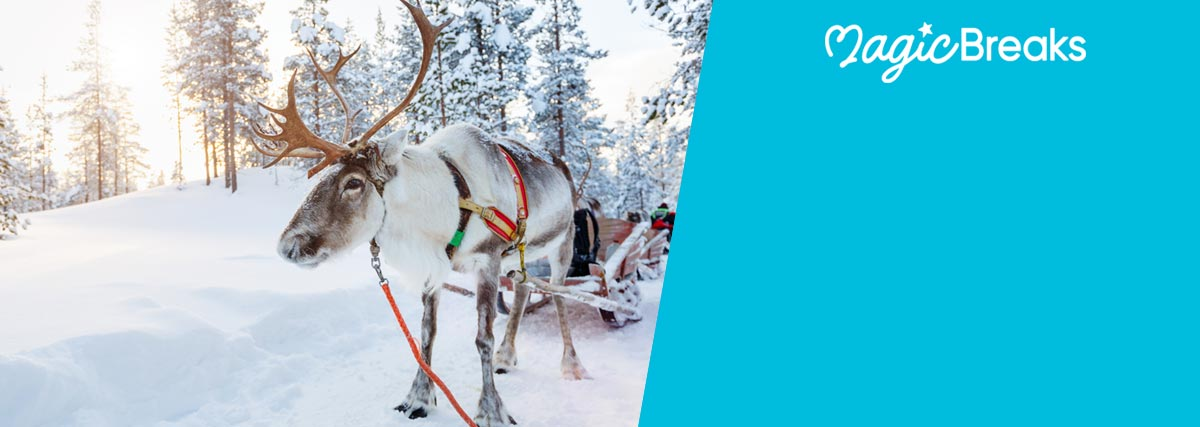 MagicBreaks Holidays to Lapland special offer carousel banner
