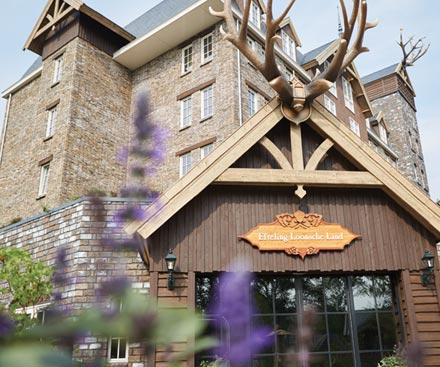 Efteling Hotel Loonsche Land